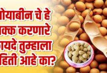 soyabenn health benifit marathi effects protens