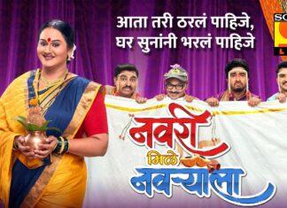 Navri Mile Navryala Cast Wiki Actress Actor Real Names Sony marathI Serial