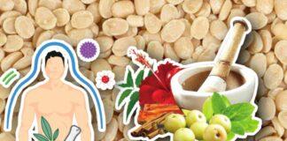 urad-dal-udid-dal-Black-lentils-Black-gram-health-benifit-in-marathi-side-effects-fats-ayuvedic-daal